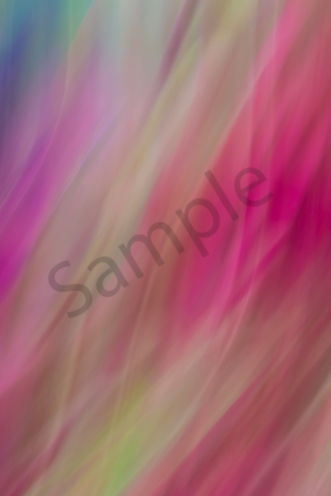 Natural Motion # 9 - Abstract Art Photographs for sale by Ron Pickering
