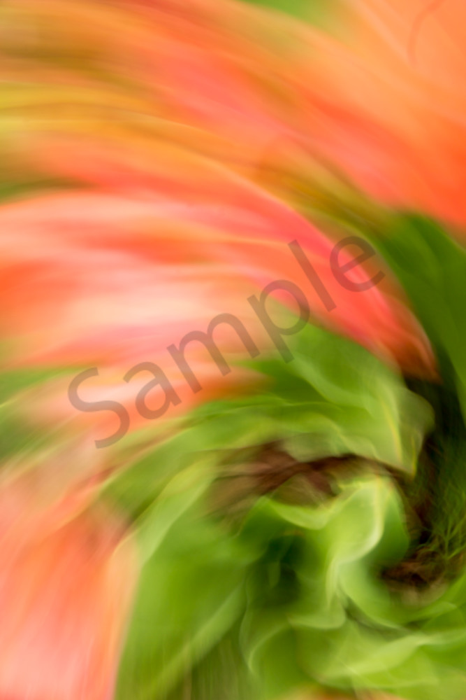 Natural Motion # 10 - Abstract Art Photographs for sale by Ron Pickering