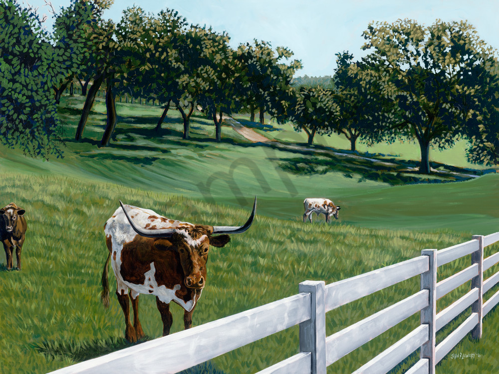 Longhorn and Round Top, Texas landscape paintings by John R. Lowery available as art prints
