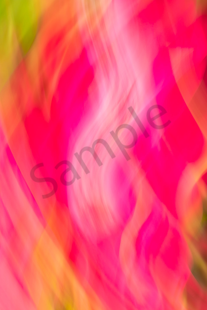 Natural Motion # 20 - Abstract Art Photographs for sale by Ron Pickering