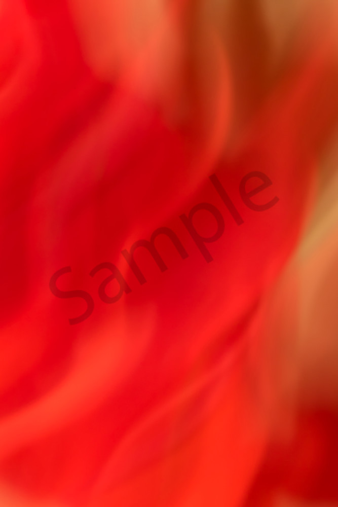 Natural Motion # 11 - Abstract Art Photographs for sale great for interior design. Ron Pickering Photography