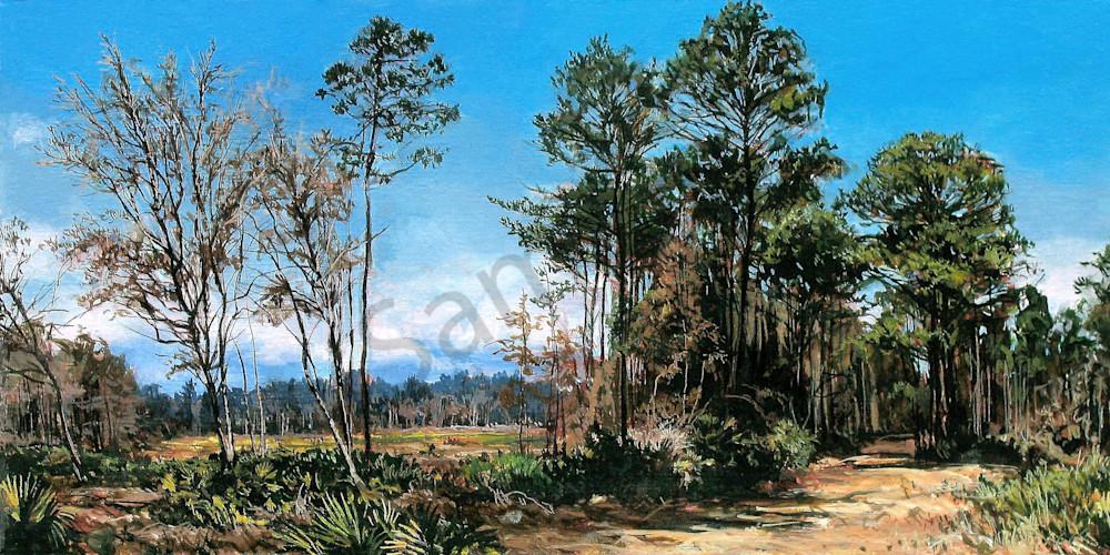 Pine Grove landscape print | Kevin Grass Fine Art