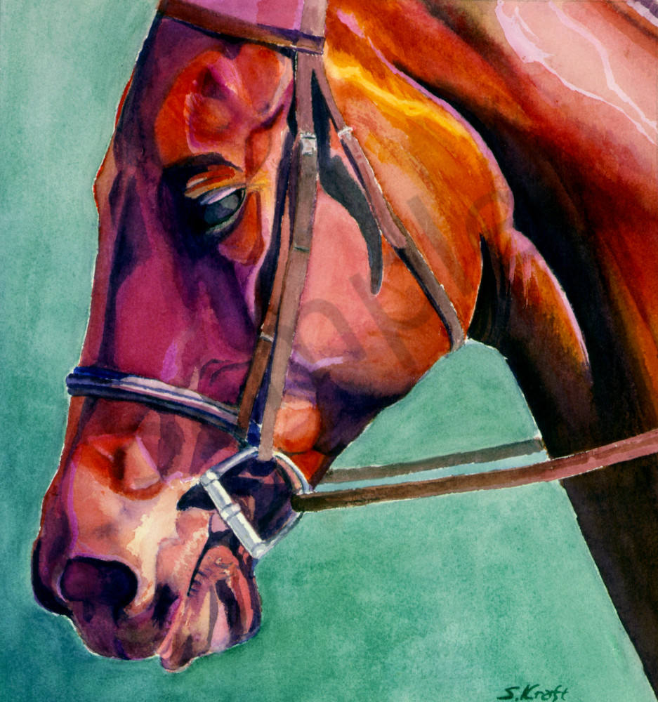 horse painting, watercolor, bridled, horse by Susan Kraft