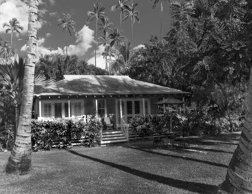 Plantation Hale