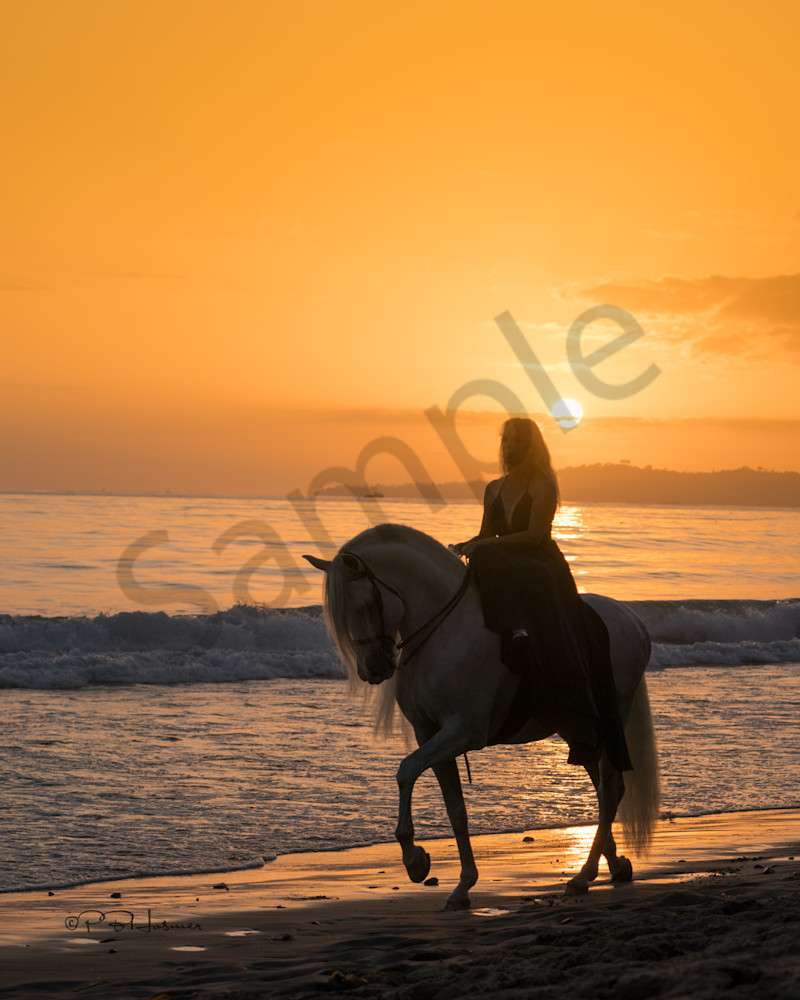 Sunset Ride on the Beach