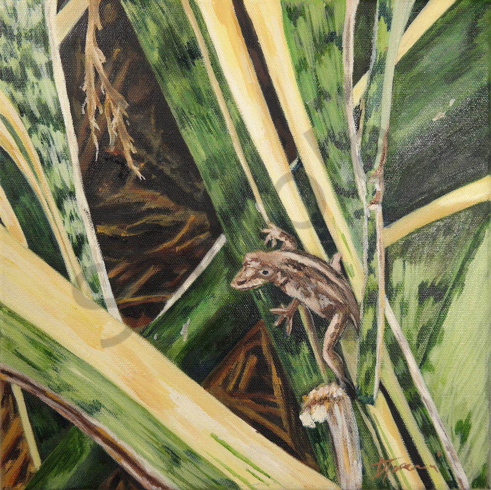 """ Florida Gecko  Print"" – Fine Art Prints on Canvas, Paper, Metal & More by Daniella Toscanini""."