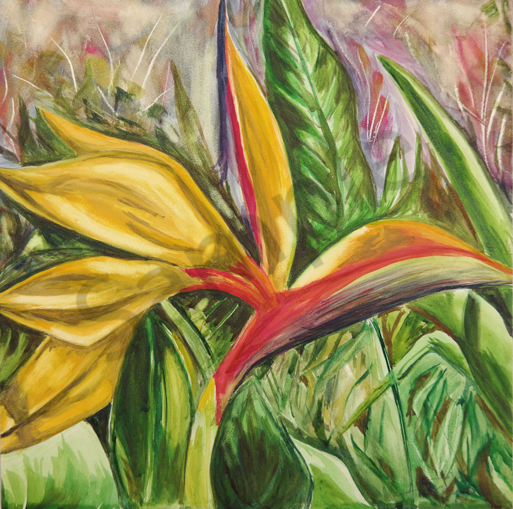 """Hawaiian Flower Print-Fine Art Prints on Canvas, Paper, Metal & More by Daniella Toscanini""."