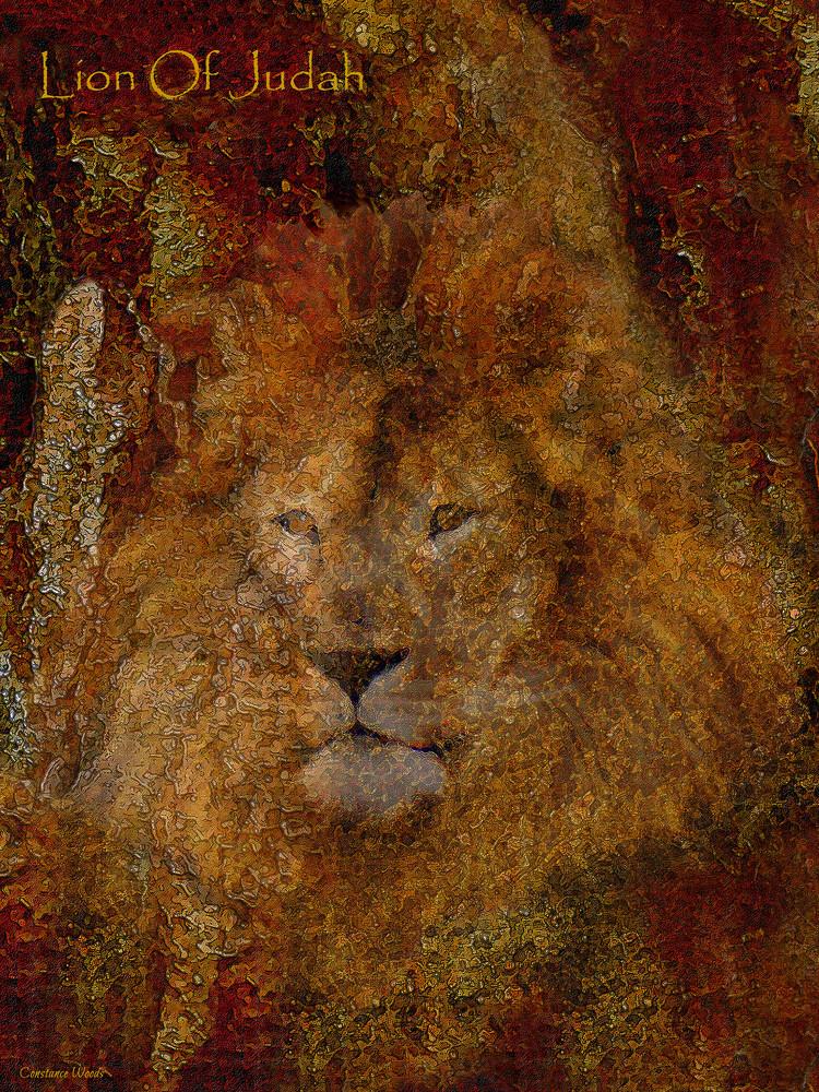 """""""Lion Of Judah"""" by Constance Woods   Prophetics Gallery"""