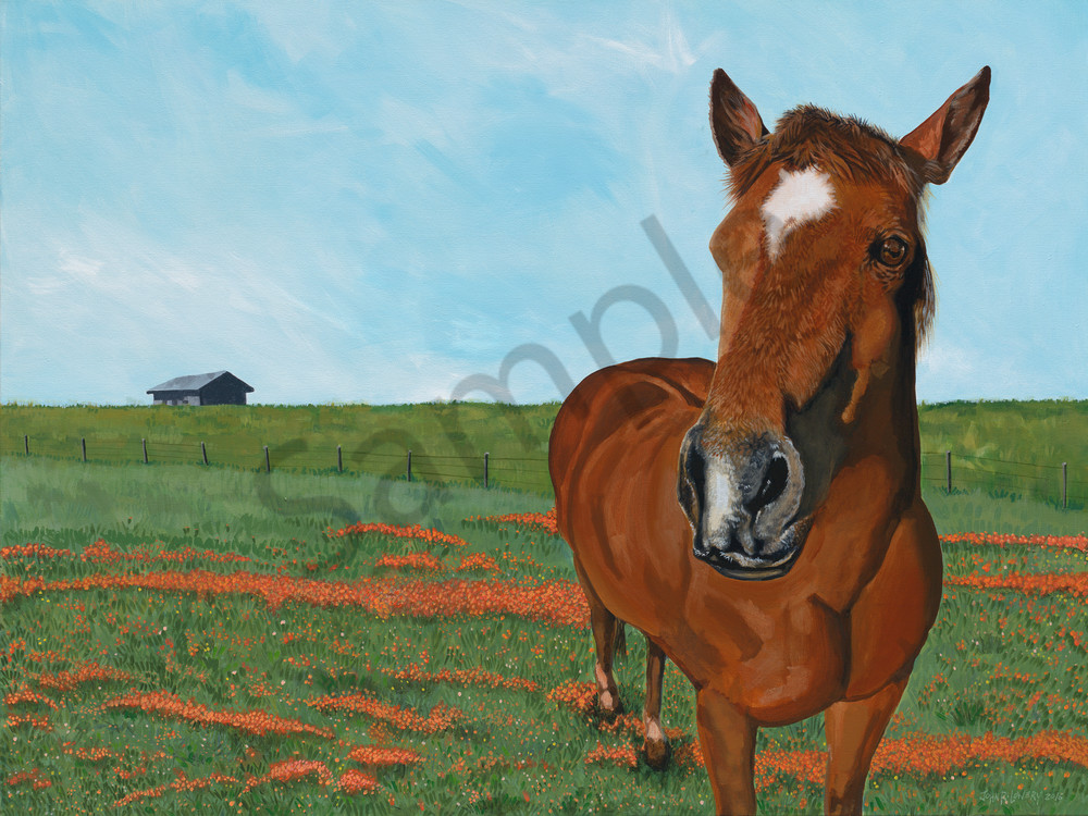 Horse paintings by Texas based artist, John R. Lowery for sale as art prints