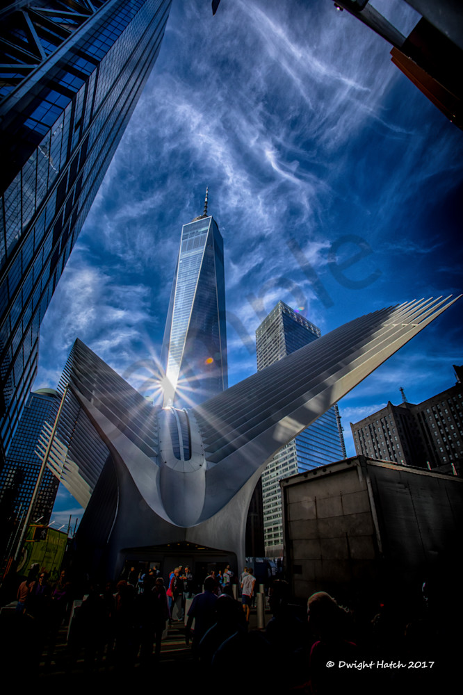 The Oculus And Freedom Tower 1 2488 Photography Art | DS Hatch Photography