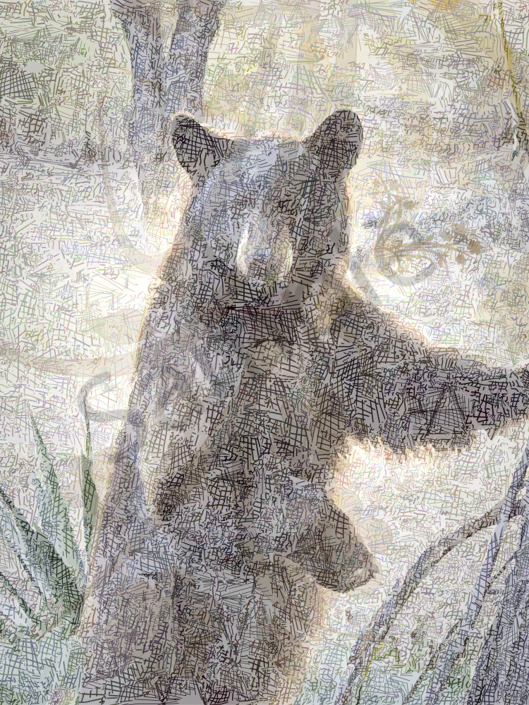 Bear art, Bear picture, grizzly Bear Art, bear artwork