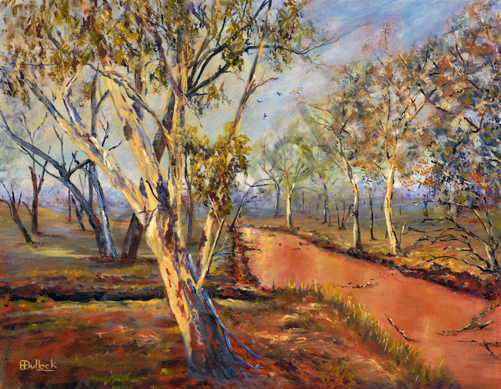 Among the River Gums