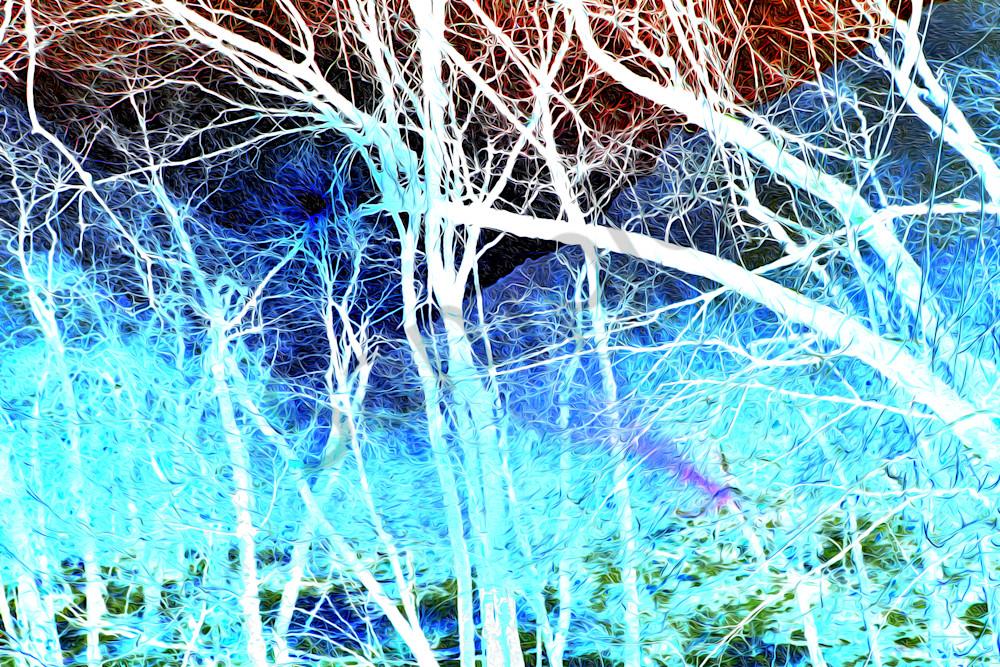 IMG 0190 UtahOils TwilightZone