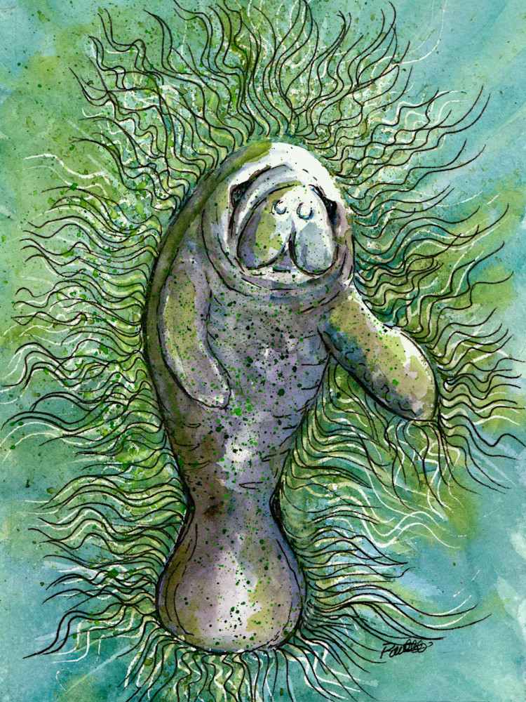 Good Vibration Manatee