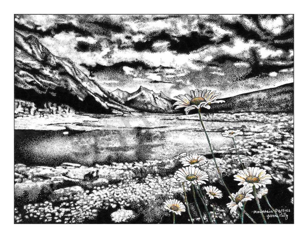 Mountain Daisies Art | Yvonne Petty Artist