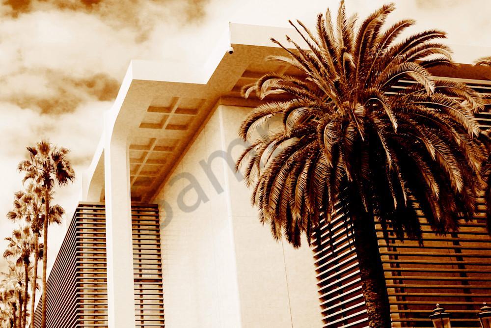 Cali Palms Art   ARTHOUSEarts
