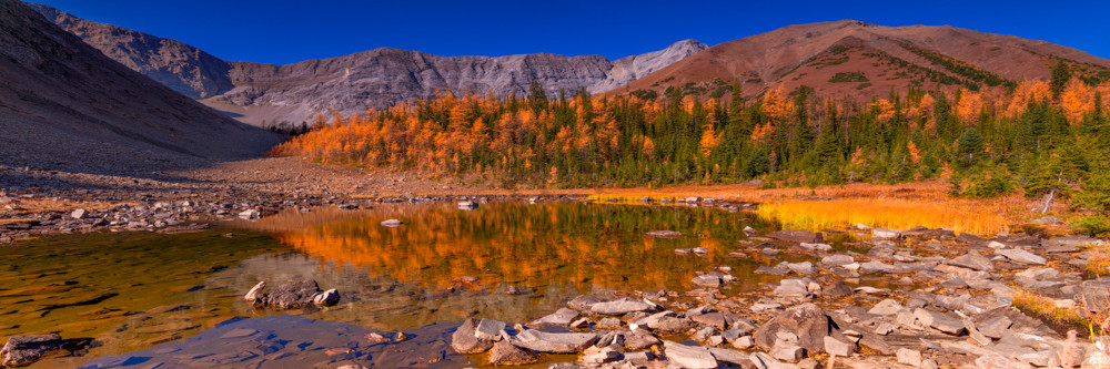 Fall colors on Pocaterra. Banff Rocky Mountains Canadian Rockies 