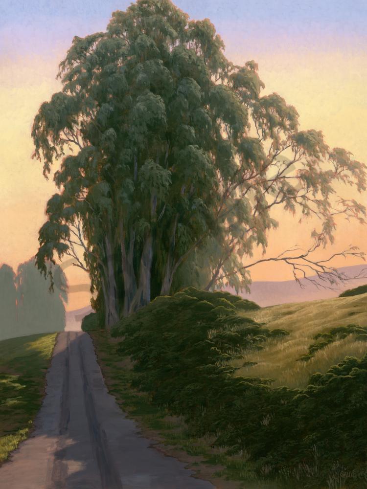 Breathtaking Eucalyptus