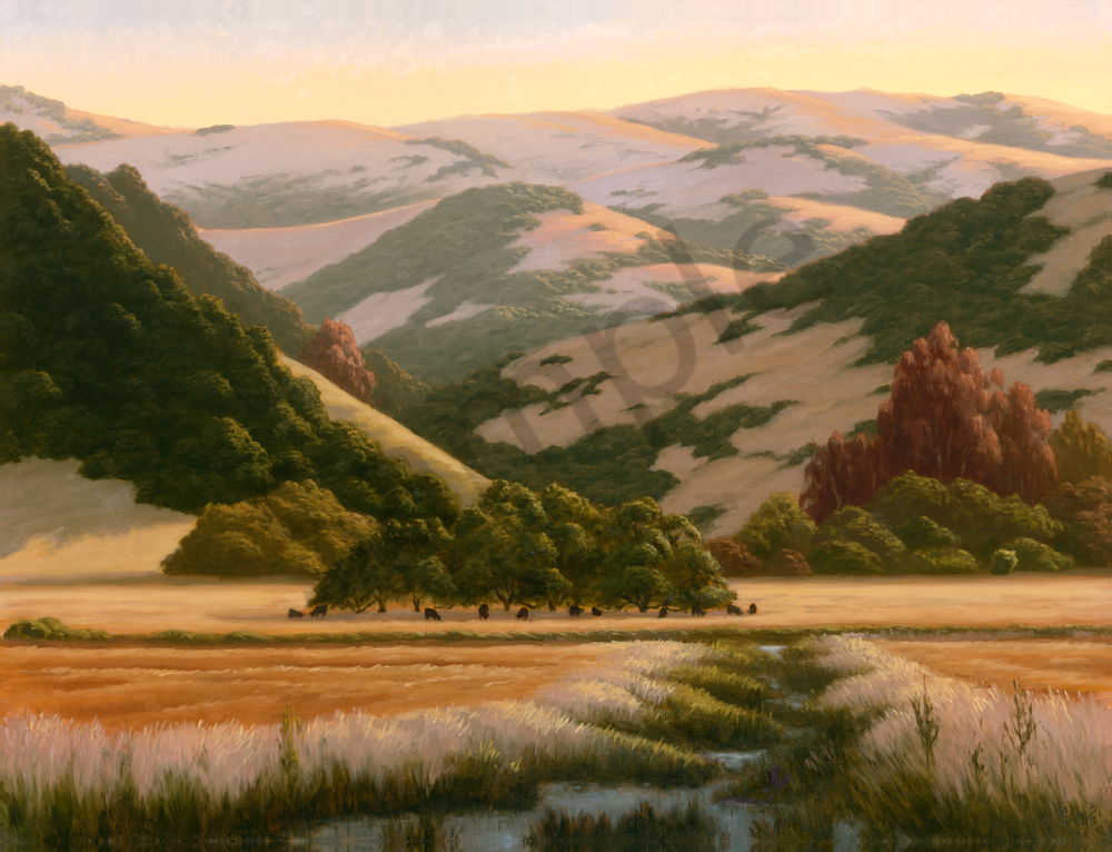California Stream and Meadows
