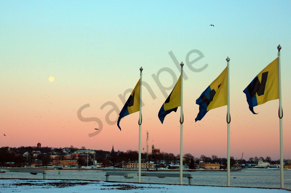Full Moon Flags Art | toddbreitling