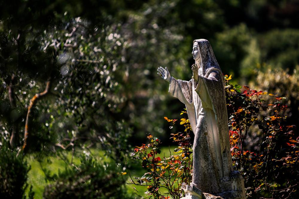 Church Gardens_8929