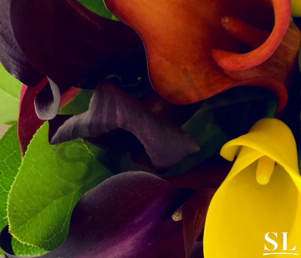 Unity Photography Art | slgparrish