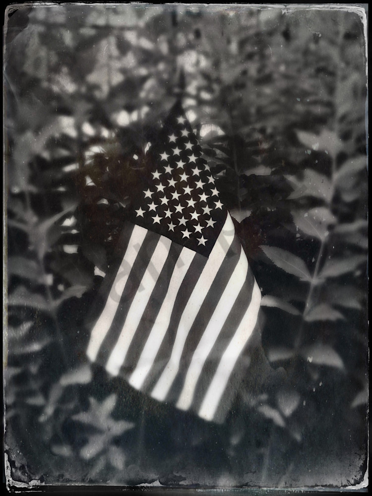 Old Glory In The Garden|Fine Art Photography by Todd Breitling|Flags and Signs|Todd Breitling Art|