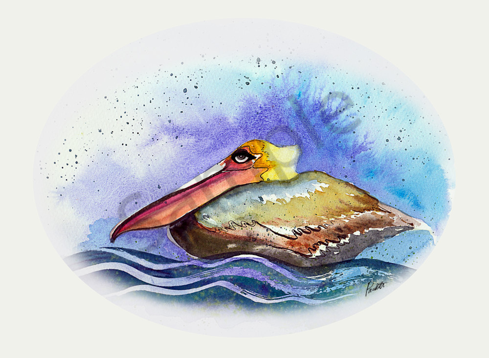 Lazy Floating Pelican