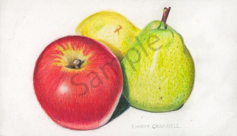 An Apple And A Pair Of Pears Art | Digital Arts Studio / Fine Art Marketplace