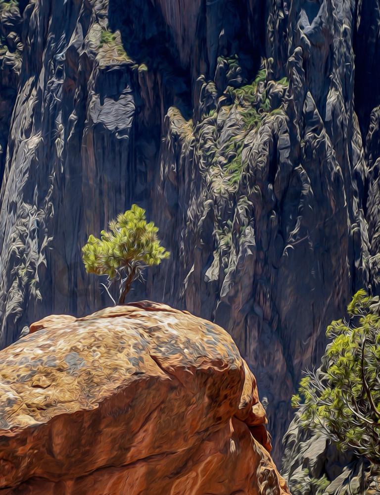 Lone Tree-Black Canyon