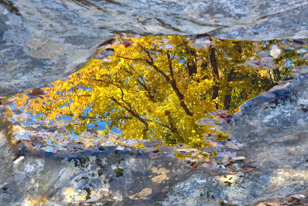 New England Fall Foliage Wall Art | Robbie George Photography