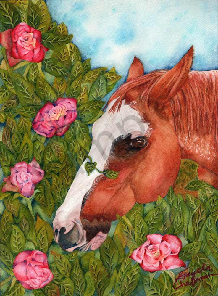"""Stop and Smell the Roses"" horse art by  Gayela's Premiere Watercolors