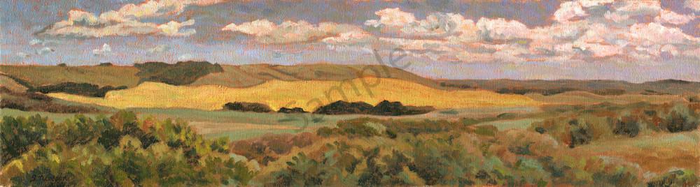 Prairie Sea - Alberta Landscapes by Sherry Nielsen