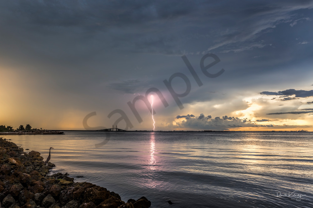 The Skyway, The Lightning and The Heron  Fine Art Photograph