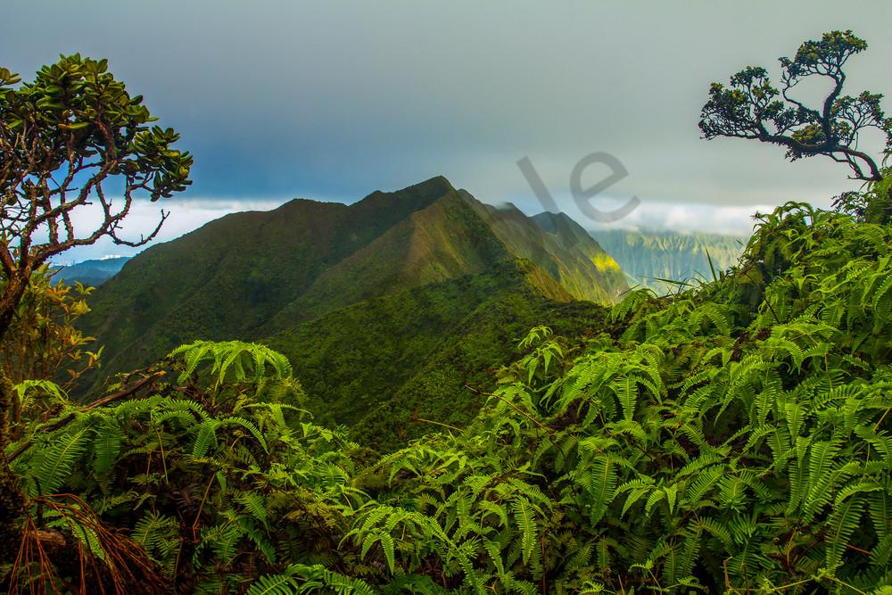 Landscape Photography   Kuliouou Sunrise by William Weaver