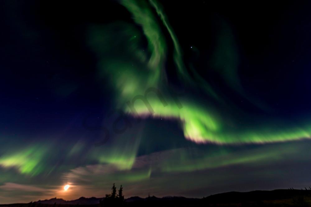 Northern lights with full moon Denali Alaska #2