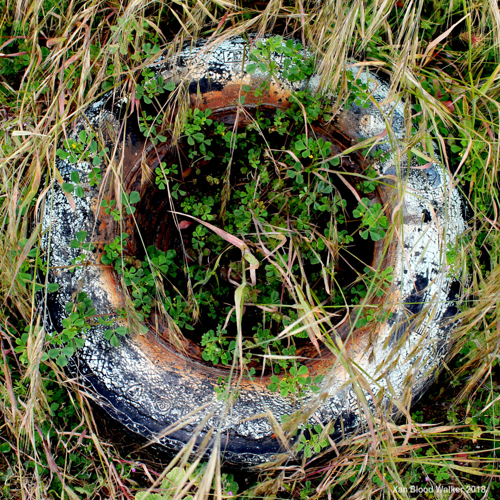 Zen Tire With Clover for sale as Fine Art