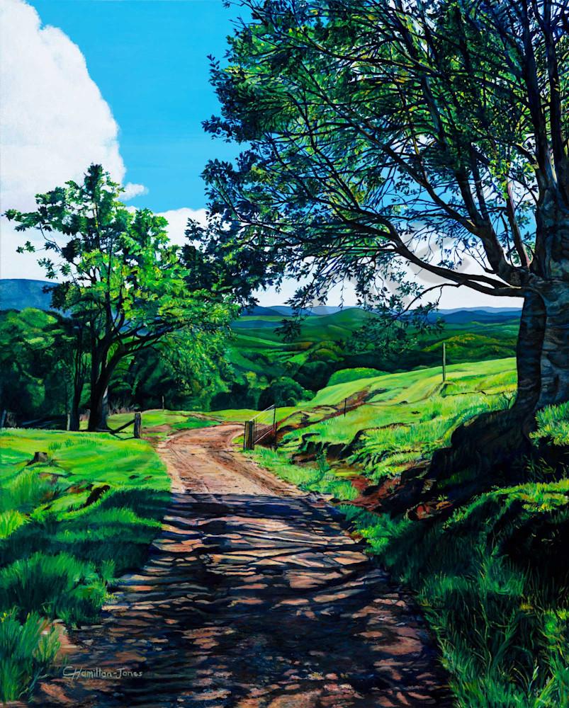 Maleny Farm Track