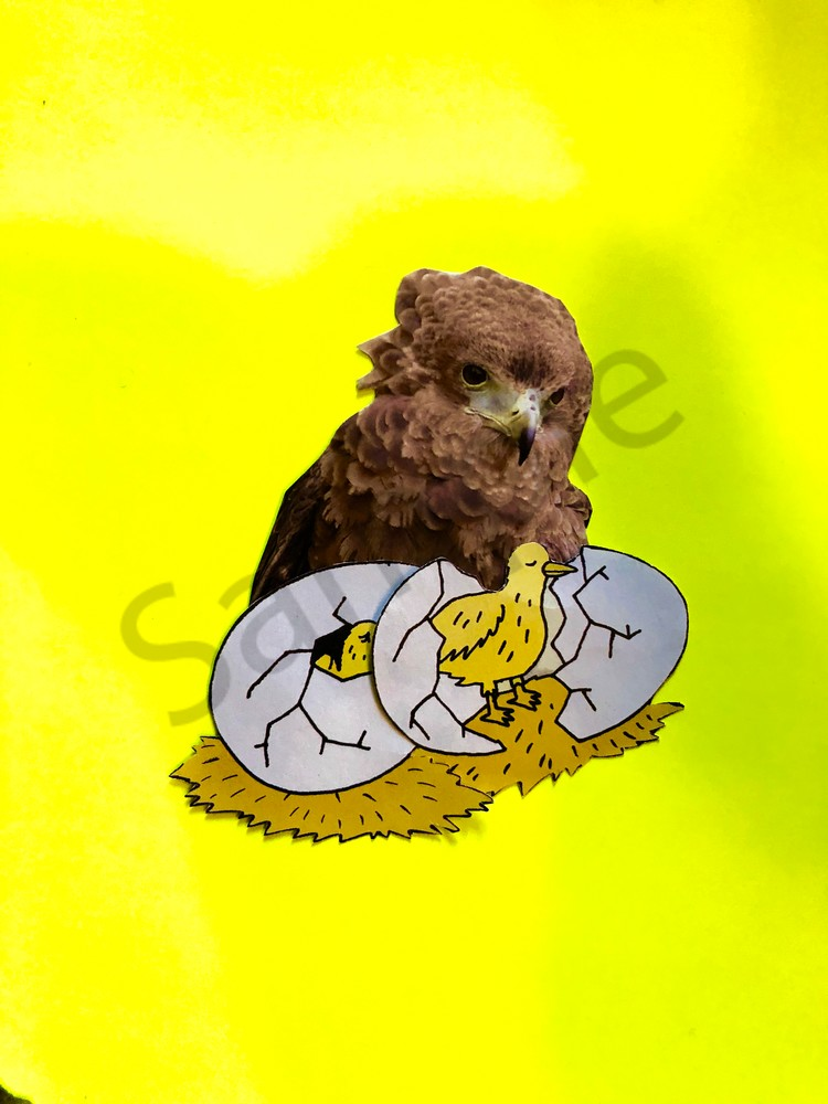 Odeta Xheka Visuals   Nursery decor & kids wall art Owl print