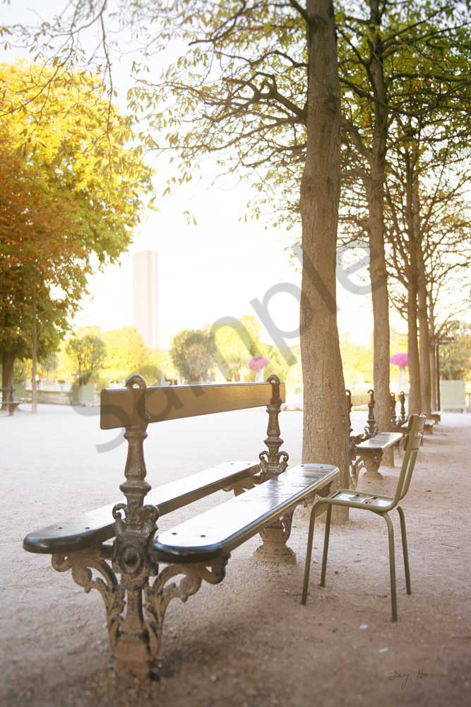 Bench In Jardin Du Luxembourg Photography Art | AngsanaSeeds Photography