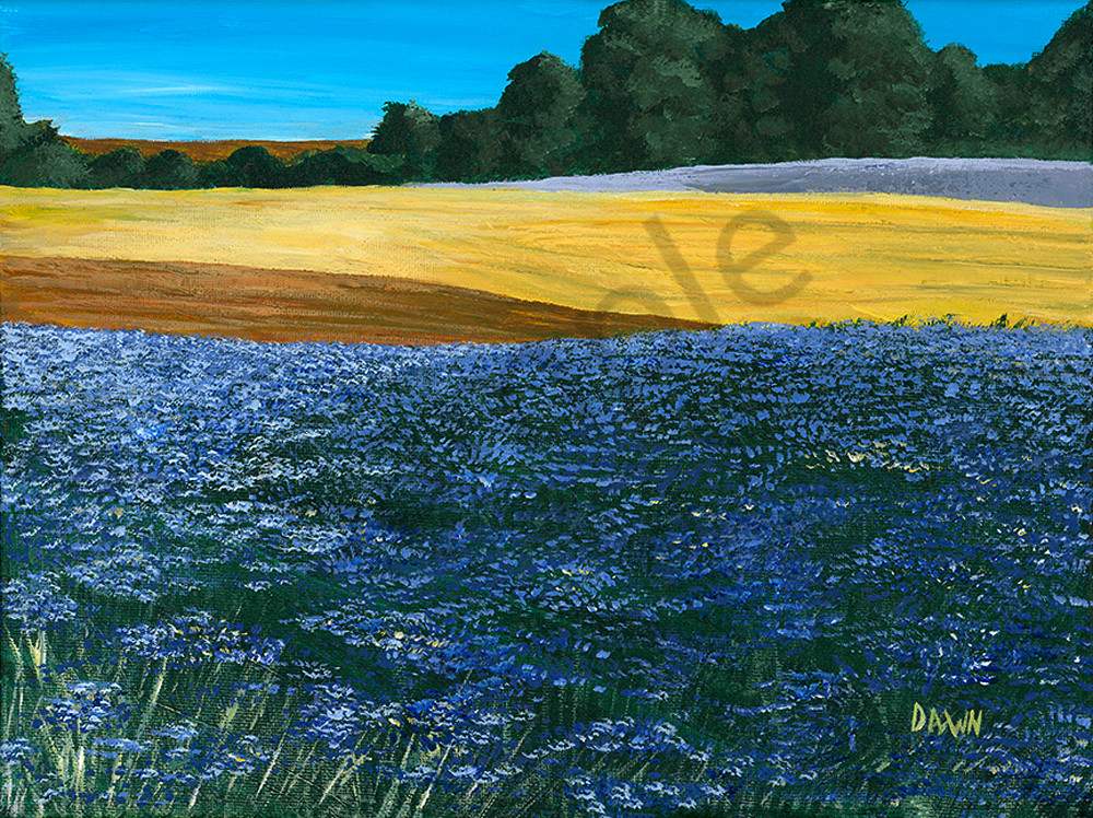 Wildflower Fields Art | Digital Arts Studio / Fine Art Marketplace