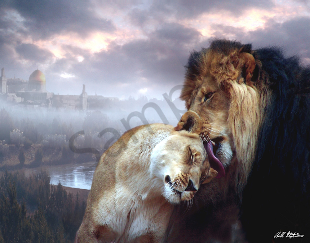 """""""Messiah And Israel"""" by Bill Stephens   Prophetics Gallery"""