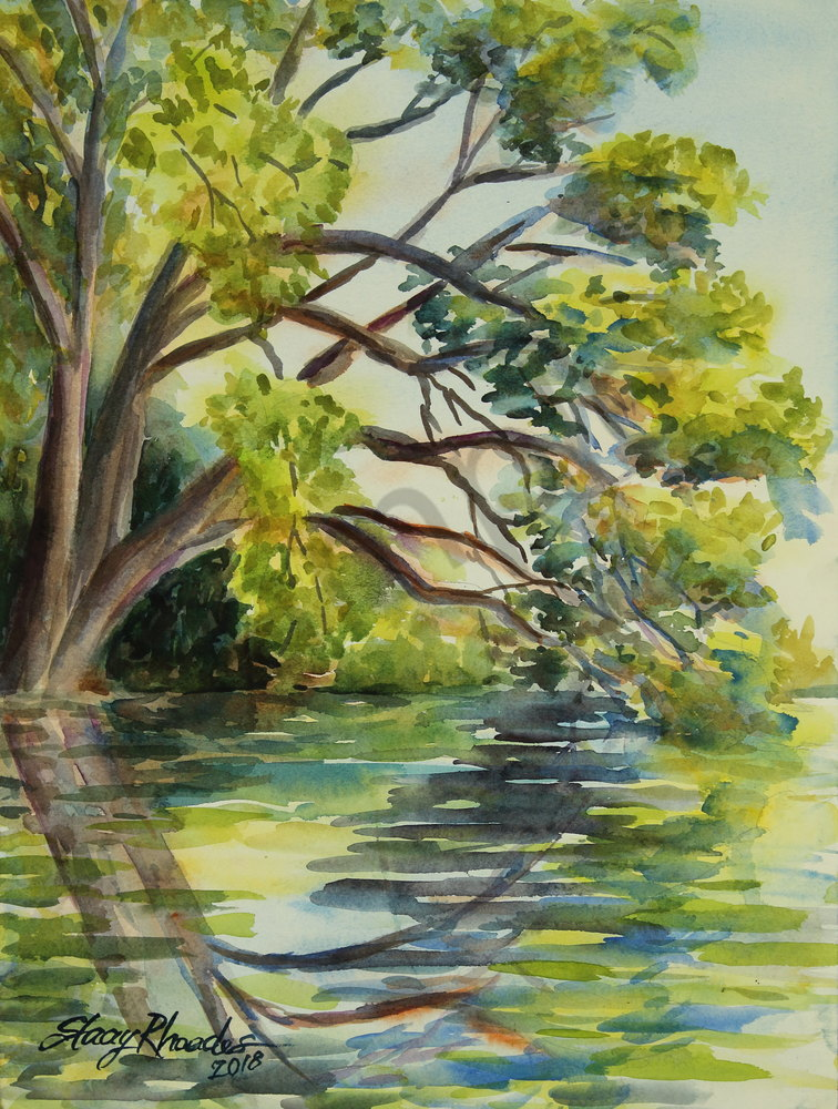 LSU Lake Live Oak Baton Rouge Kayak Water Watercolor Reflection Louisiana Landscapes Cool Lsu Bedroom Style Painting