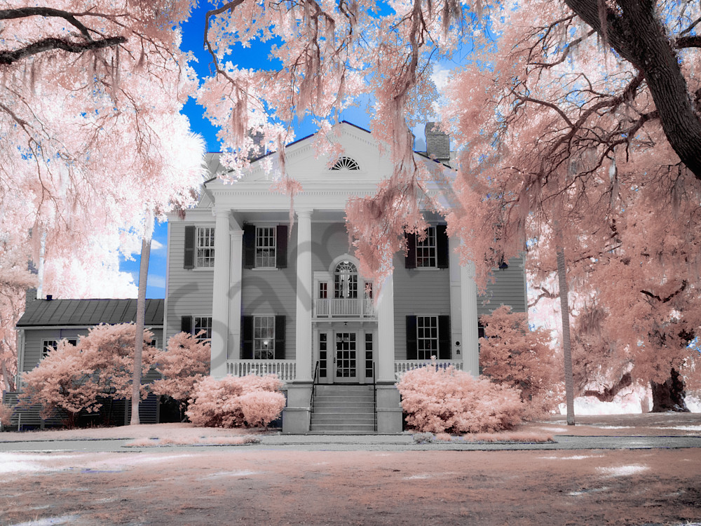 McLeod Plantation Infrared Image