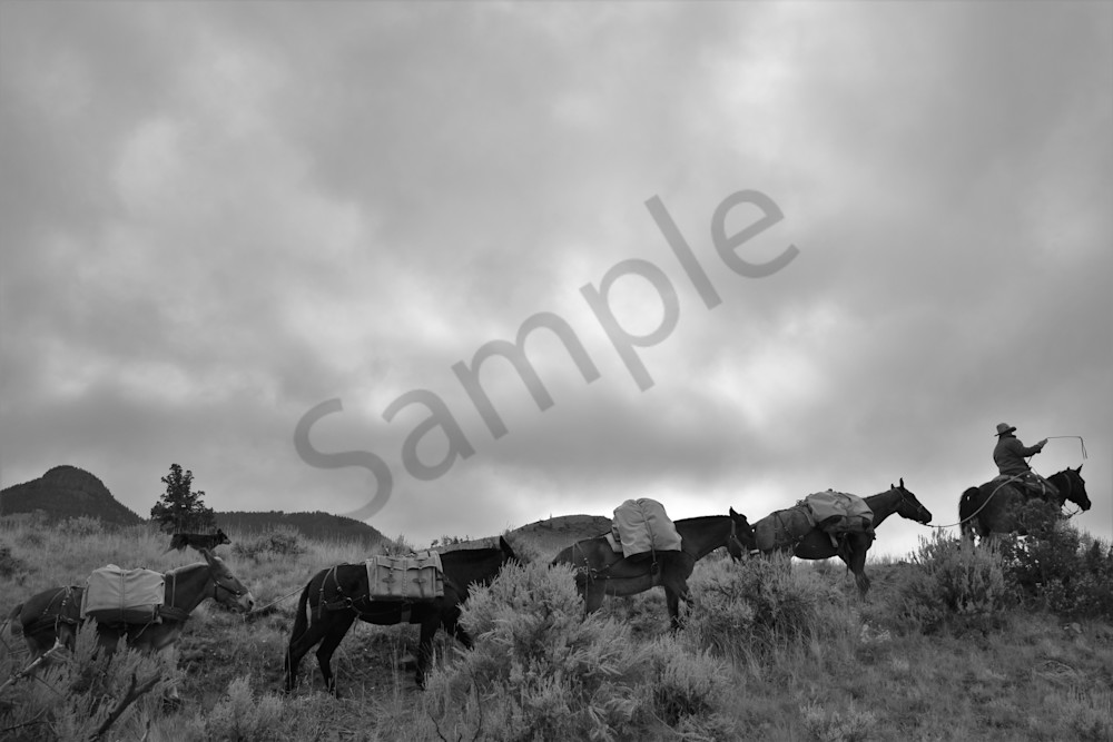 Black and White photograph of a hunting guide and pack string for sale as Fine Art