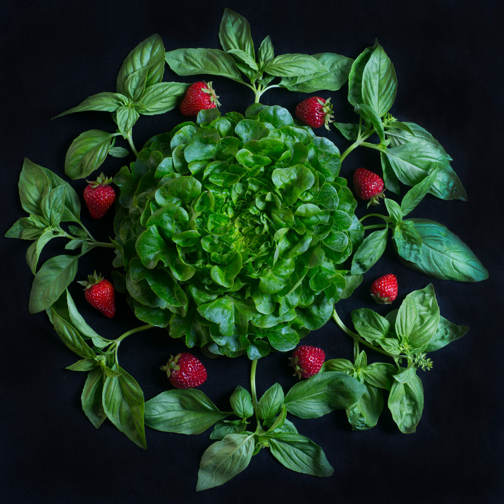 Strawberry, Basil Mandala