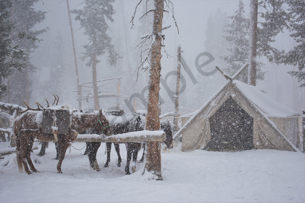Photograph of pack horses at the hitch rail on a snowy day for sale as Fine Art