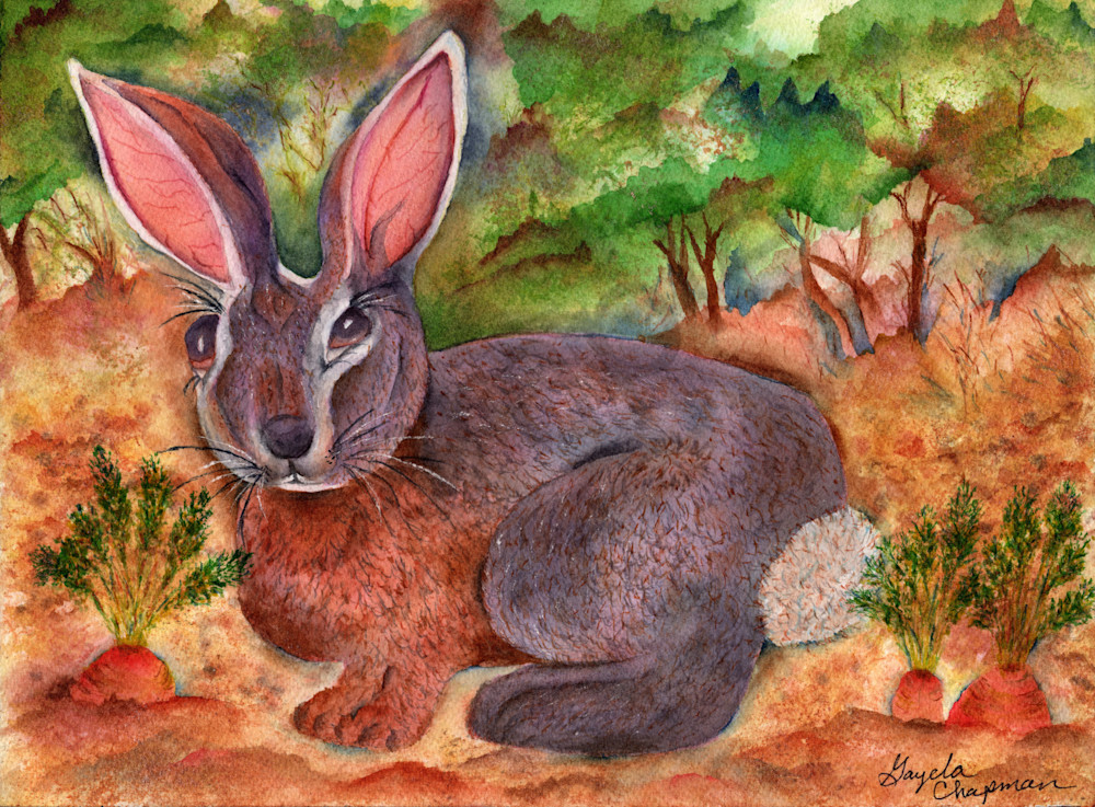 Bunny rabbit art by Gayela's Premiere Watercolor|Main Store