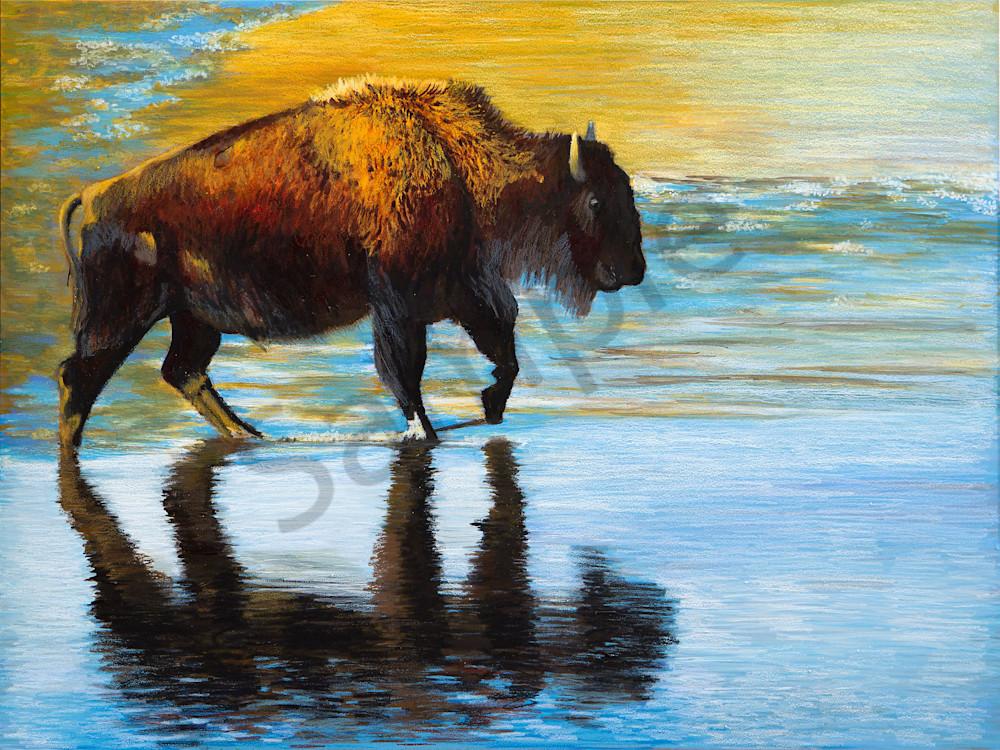Bison Step