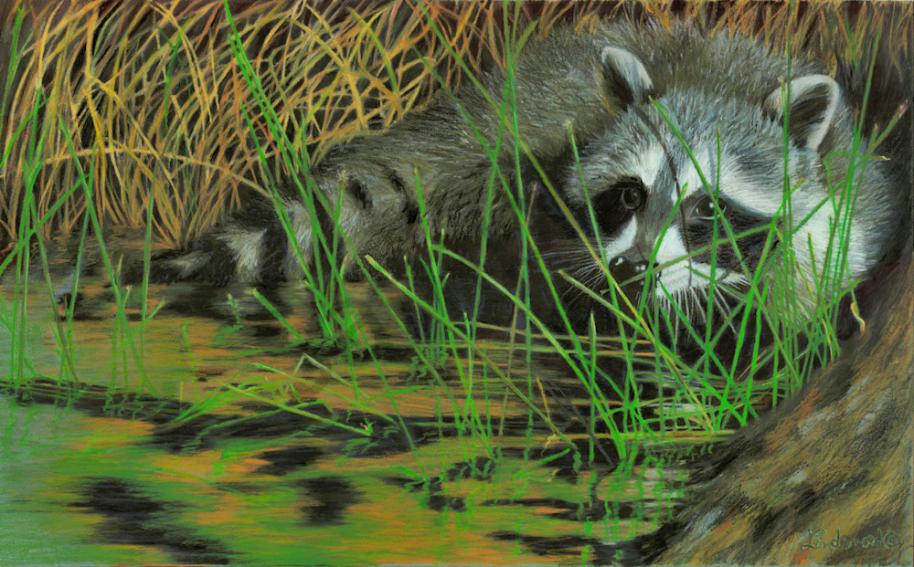 Masked Prowler